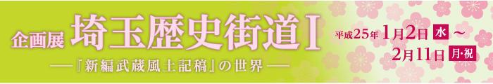 埼玉歴史街道Ⅰ-『新篇武蔵風土記稿』の世界-
